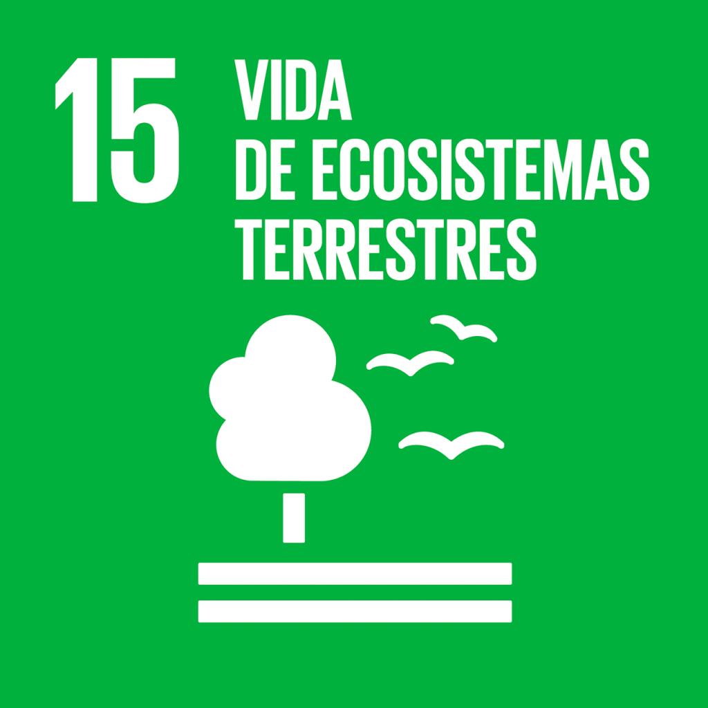 ODS 15. Vida de ecosistemas terrestres